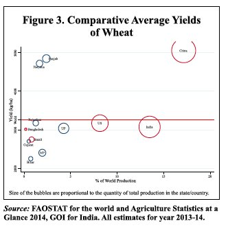 Indian agriculture hobbled by low…