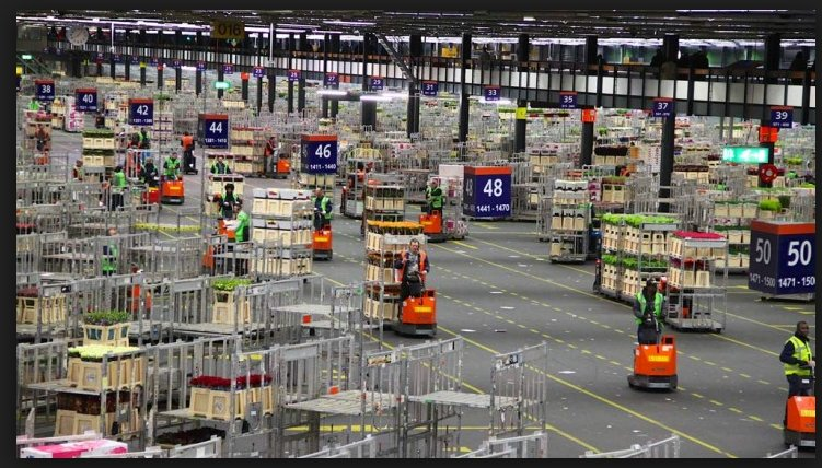 Worlds biggest flower market in…
