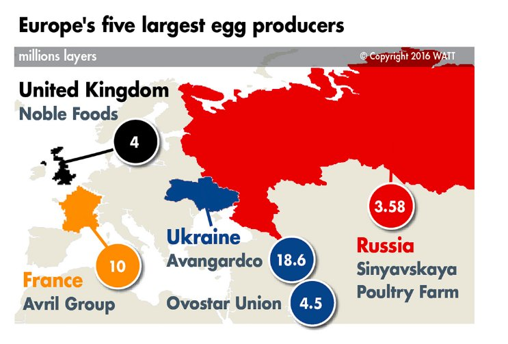 The European egg economy: Ukraine…