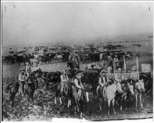 XIT ranch 1885: 3 m…
