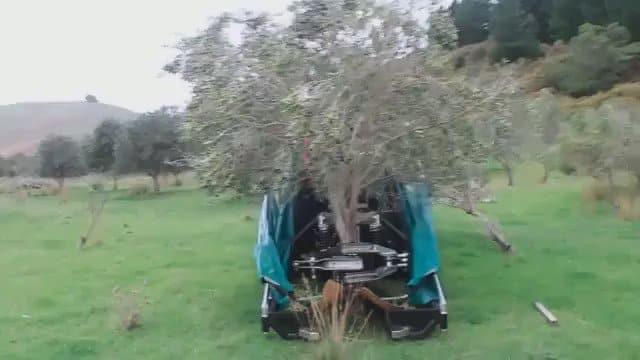 RT @MachinePix: Harvesting olives. https://t.co/qvpefh1sDY
