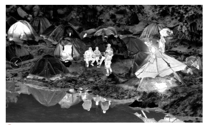 Richard Mosse's extraordinary images from…