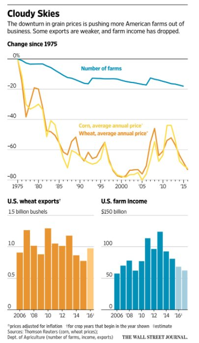 Collapse in grain export prices…