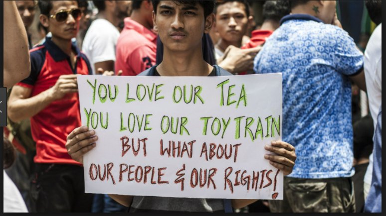 Darjeeling tea production halted by…