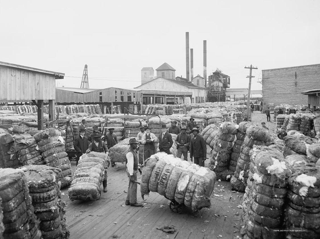 RT @lienhart85: Weighing cotton, ca…