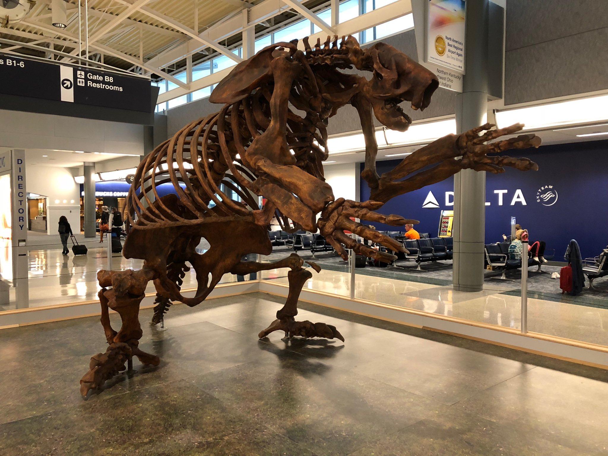 Giant sloth at Cincinnati airport.…