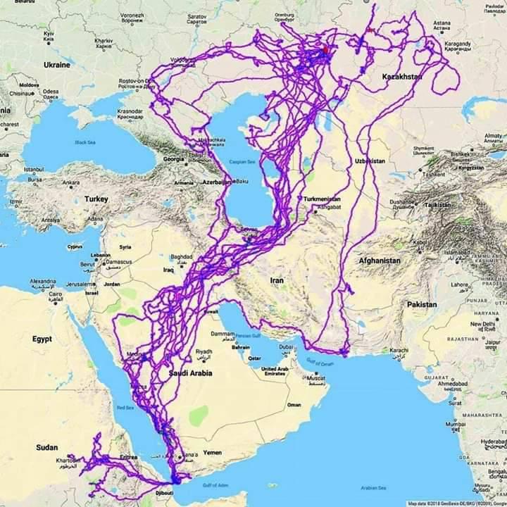 RT @foued: Le parcours d'un…