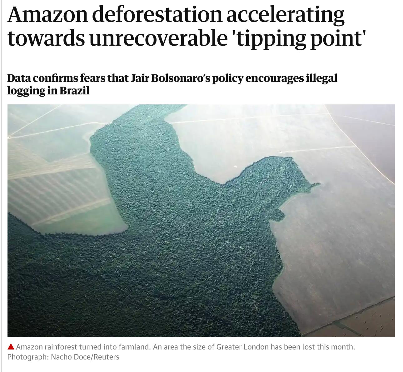 Logging of Amazonian rainforest may…