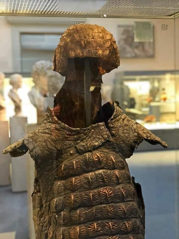 RT @amayor: Roman crocodile armor,…
